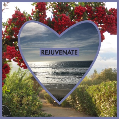 Rejuvenate 2016