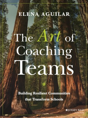 art of coaching teams