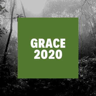 Amazon Rainforest Fires Update